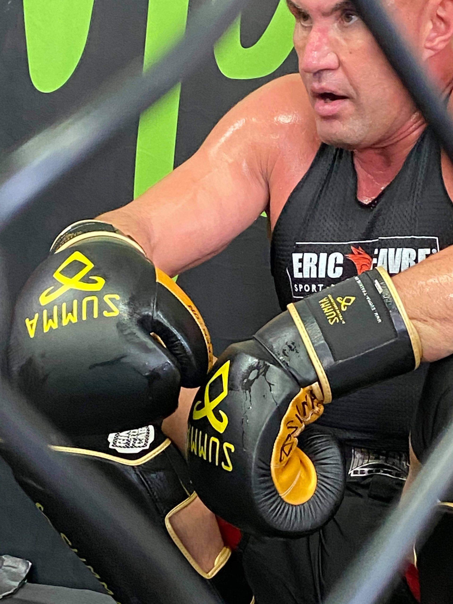 Jérôme le Banner Cage MMA